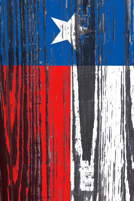 Different Take On A Texas Flag 2013 Suzanne Birrell 432x648
