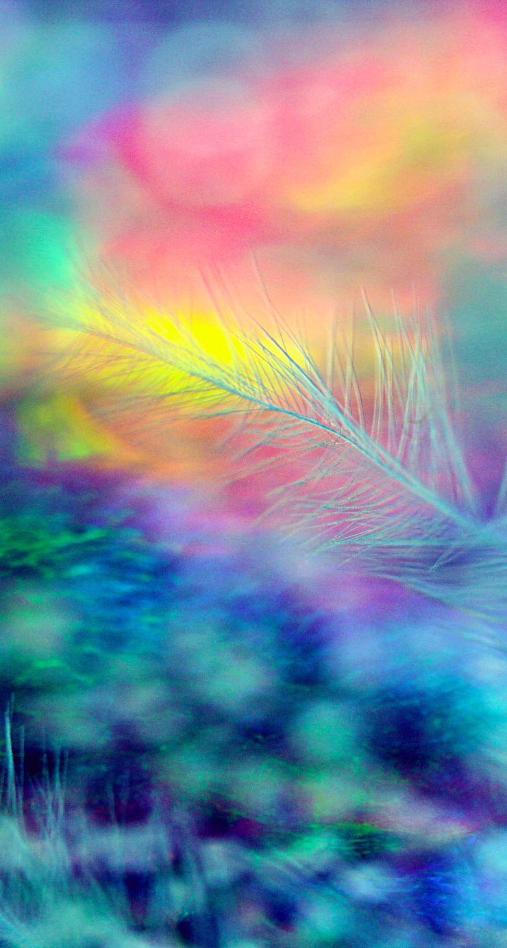 Rainbow feather Wallpapers in 2019 Iphone wallpaper Colorful 740x1384