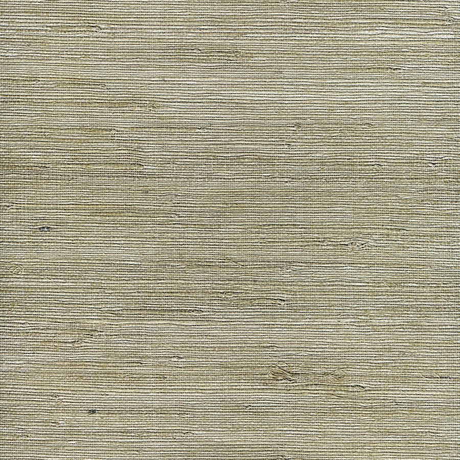 allen roth White Grasscloth Unpasted Textured Wallpaper at Lowescom 900x900