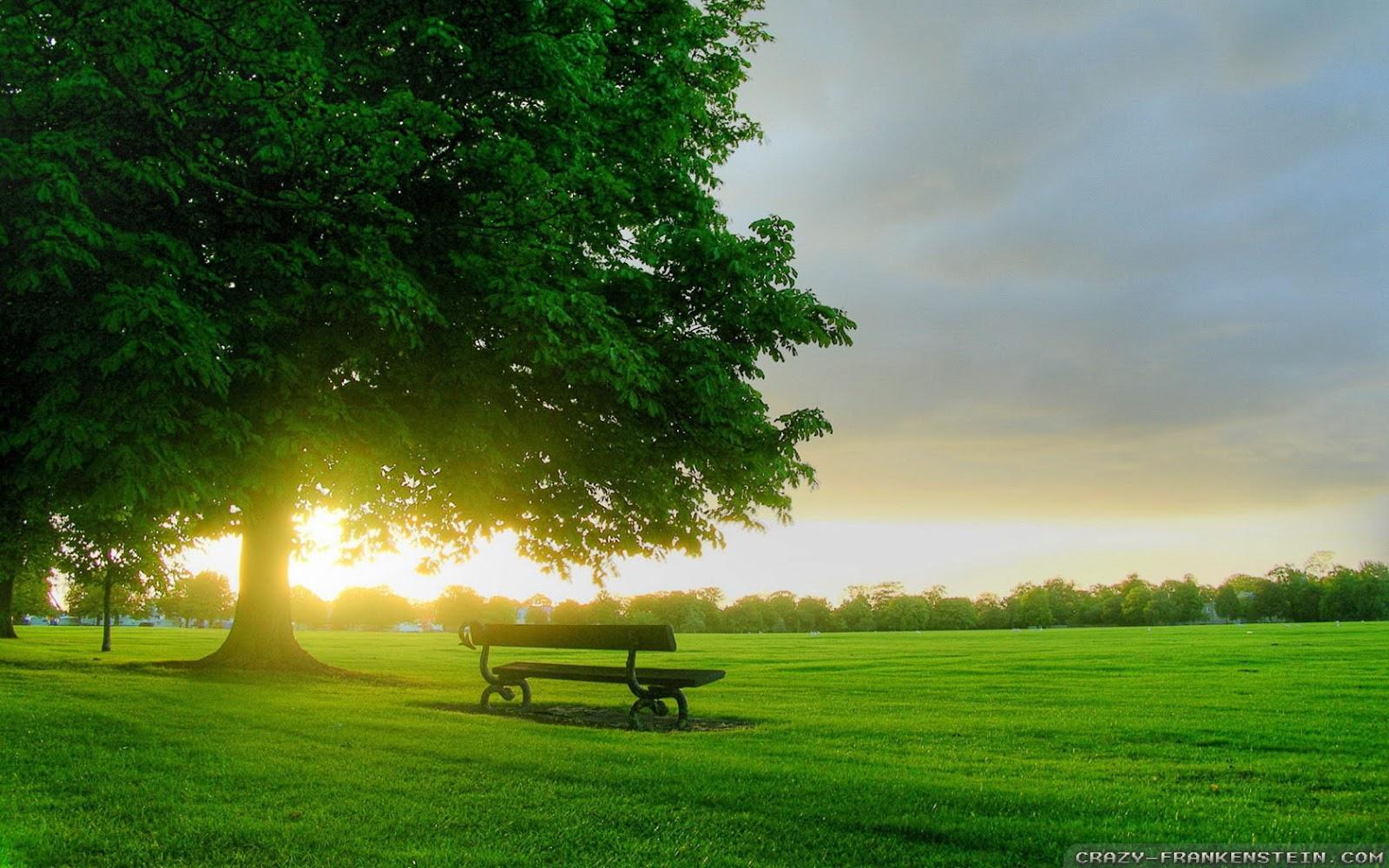Beautiful HD Wallpapers Amazing Spring Sunrise Desktop Wallpaper 1600x1000