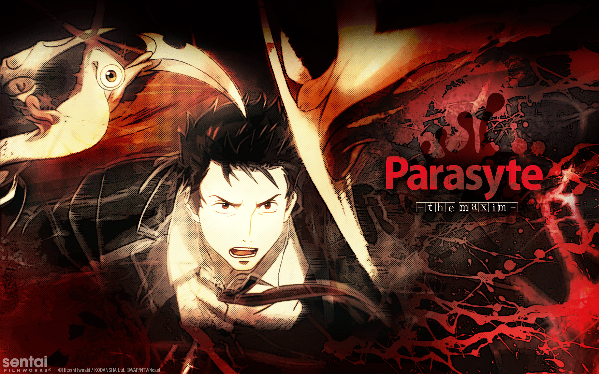 Parasyte  the maxim ] Official Shinichi Migi wallpaper from Sentai 1920x1200