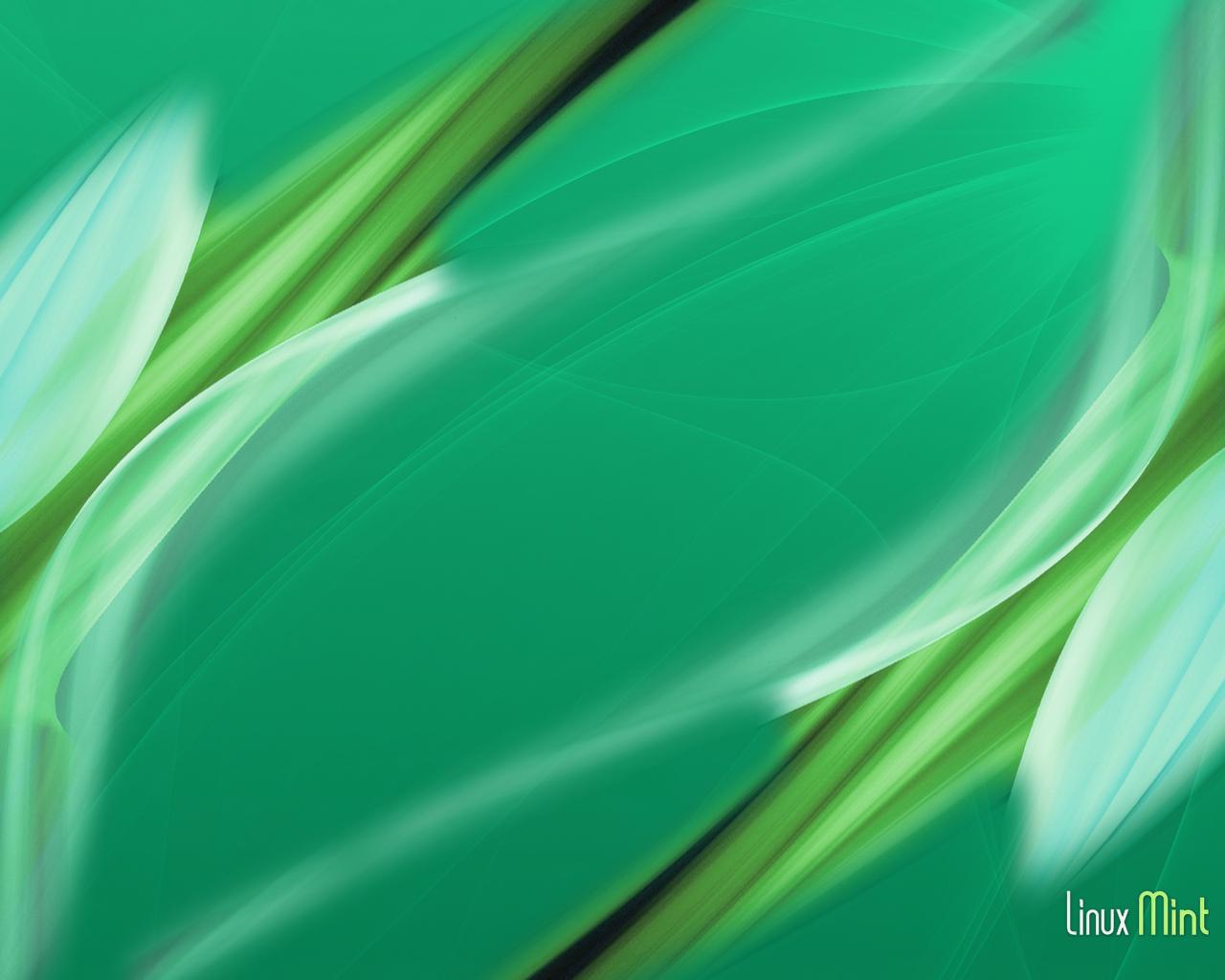 mint green desktop wallpaper