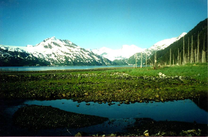 Alaska Sceneryj6jpg 882x584