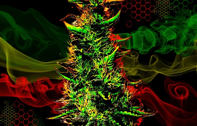 Weed Fever   HD Weed Wallpapers 780x500