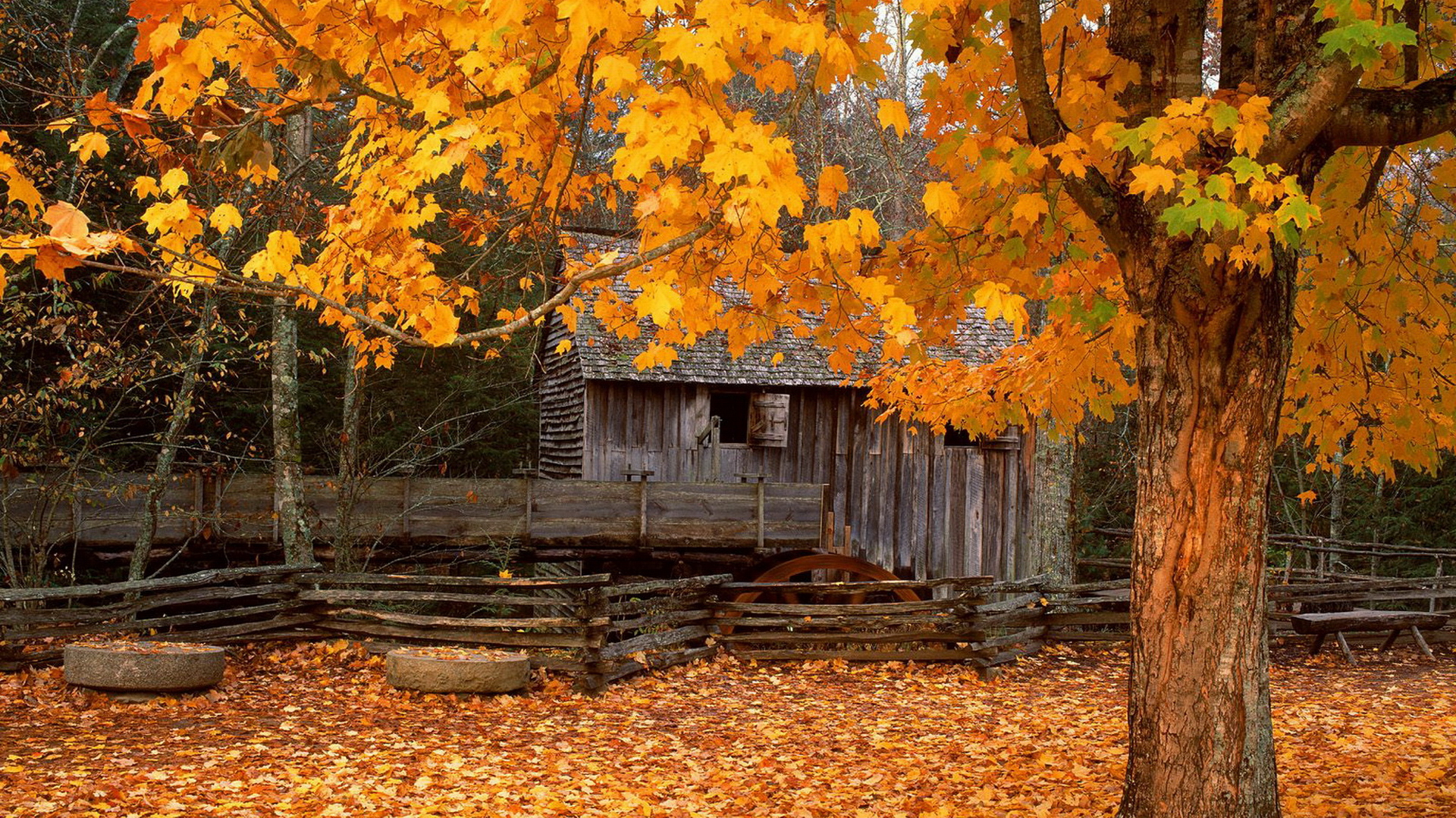 Cabin Wallpapers Autumn Cabin Myspace Backgrounds Autumn Cabin 1920x1080
