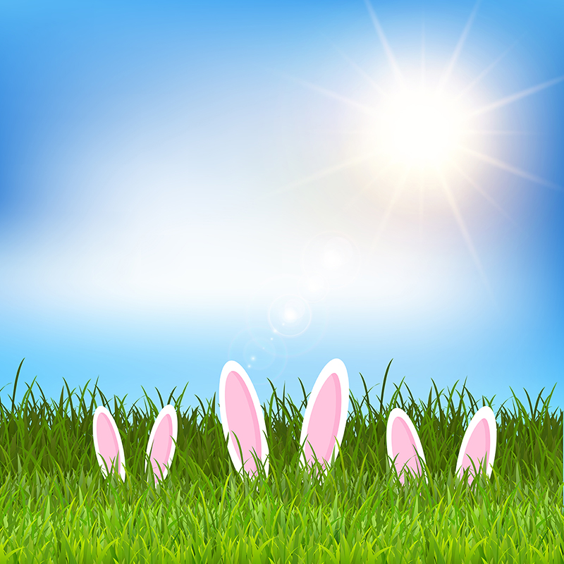 Easter Bunny Ears In Grass 0404 Easter Easter Background Easter 800x800