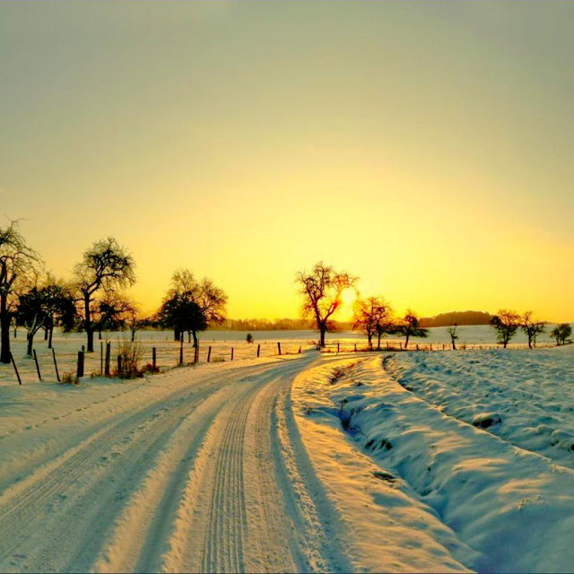 iPad Wallpapers Download 2012 Christmas Winter Wallpapers for 640x640