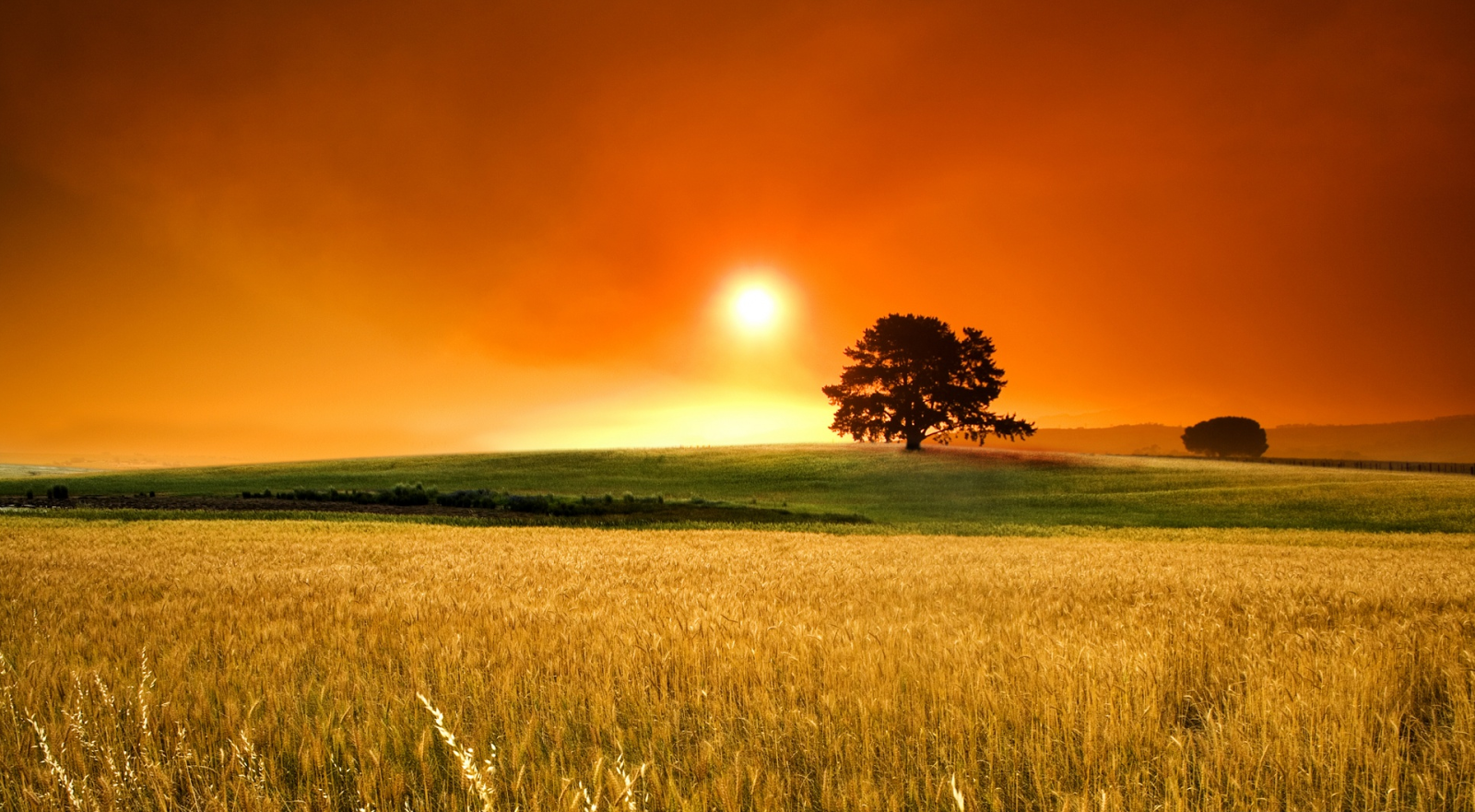 hd summer sunset desktop wallpaper hd summer sunset desktop wallpaper 1600x881