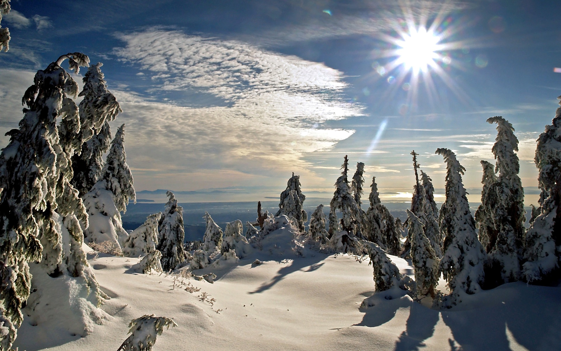 Winter Sun Wallpaper Winter Nature Wallpapers in jpg format for 1920x1200