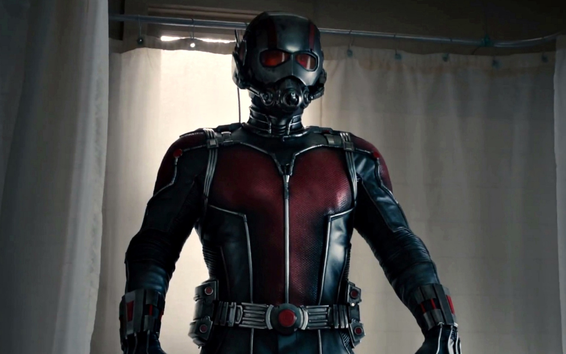 Ant Man movie wallpaper Widescreen and Full HD Wallpapers 1920x1200