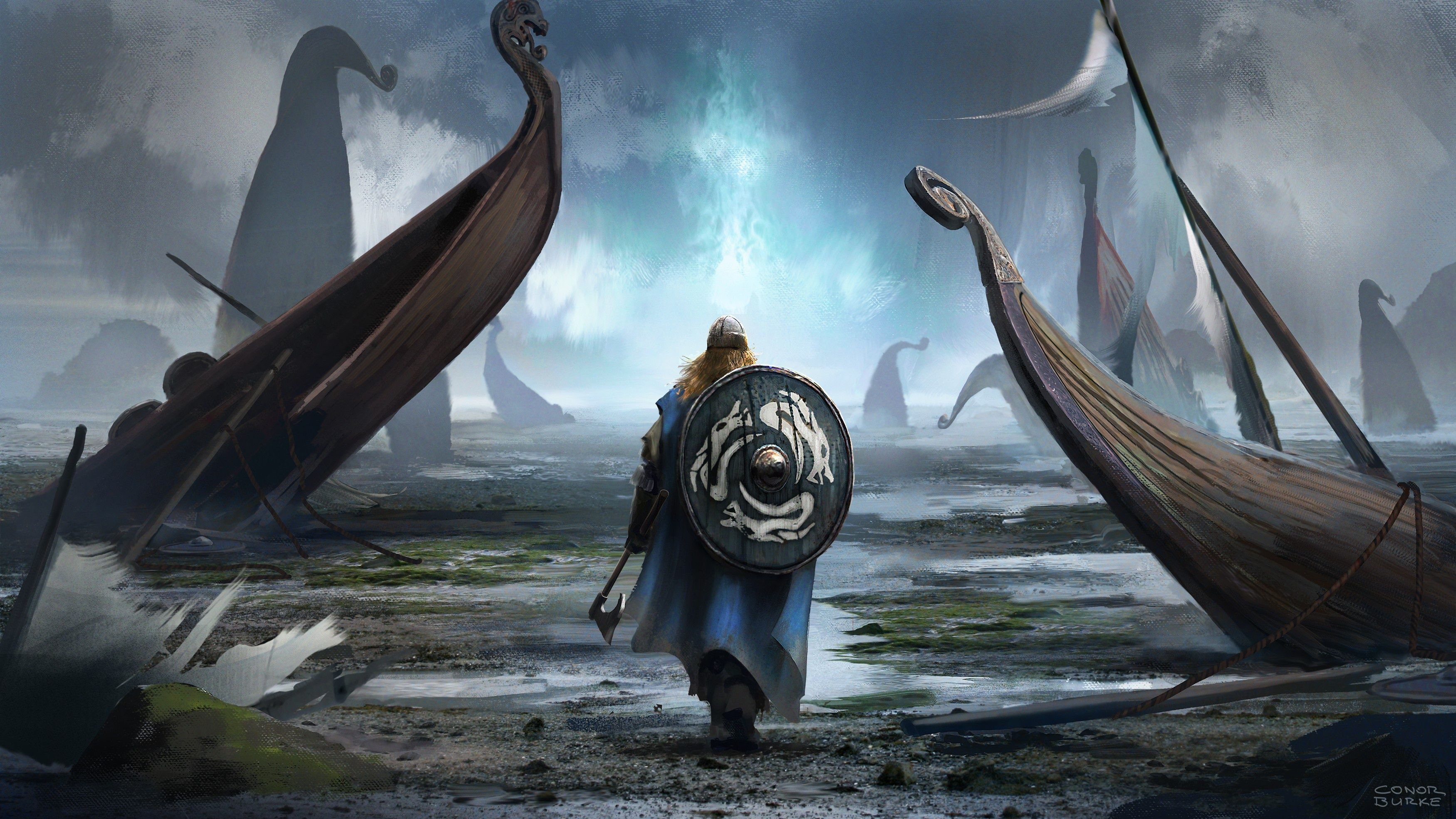 Viking Warrior Wallpapers   Top Viking Warrior Backgrounds 3500x1969