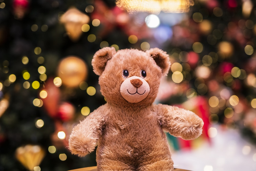 Best Teddy Bear Pictures [HD] Download Images on Unsplash 1000x667