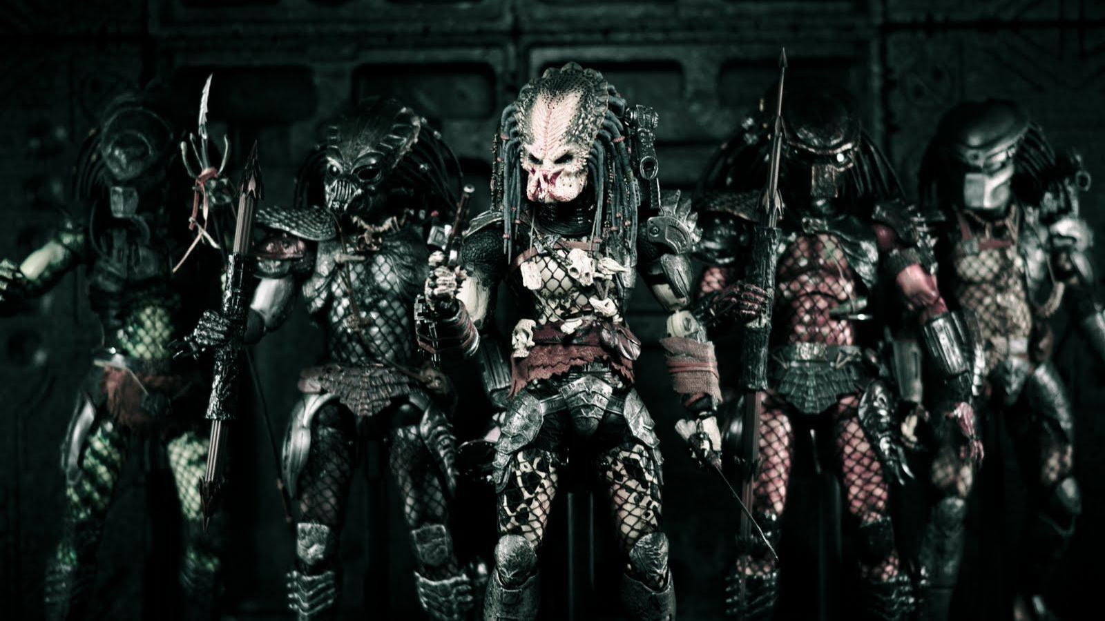 Predator Wallpapers and Background Images   stmednet 1600x900