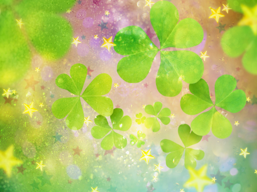 Wallpapers Of The Day Clover 1024x768px Clover Wall 1024x768