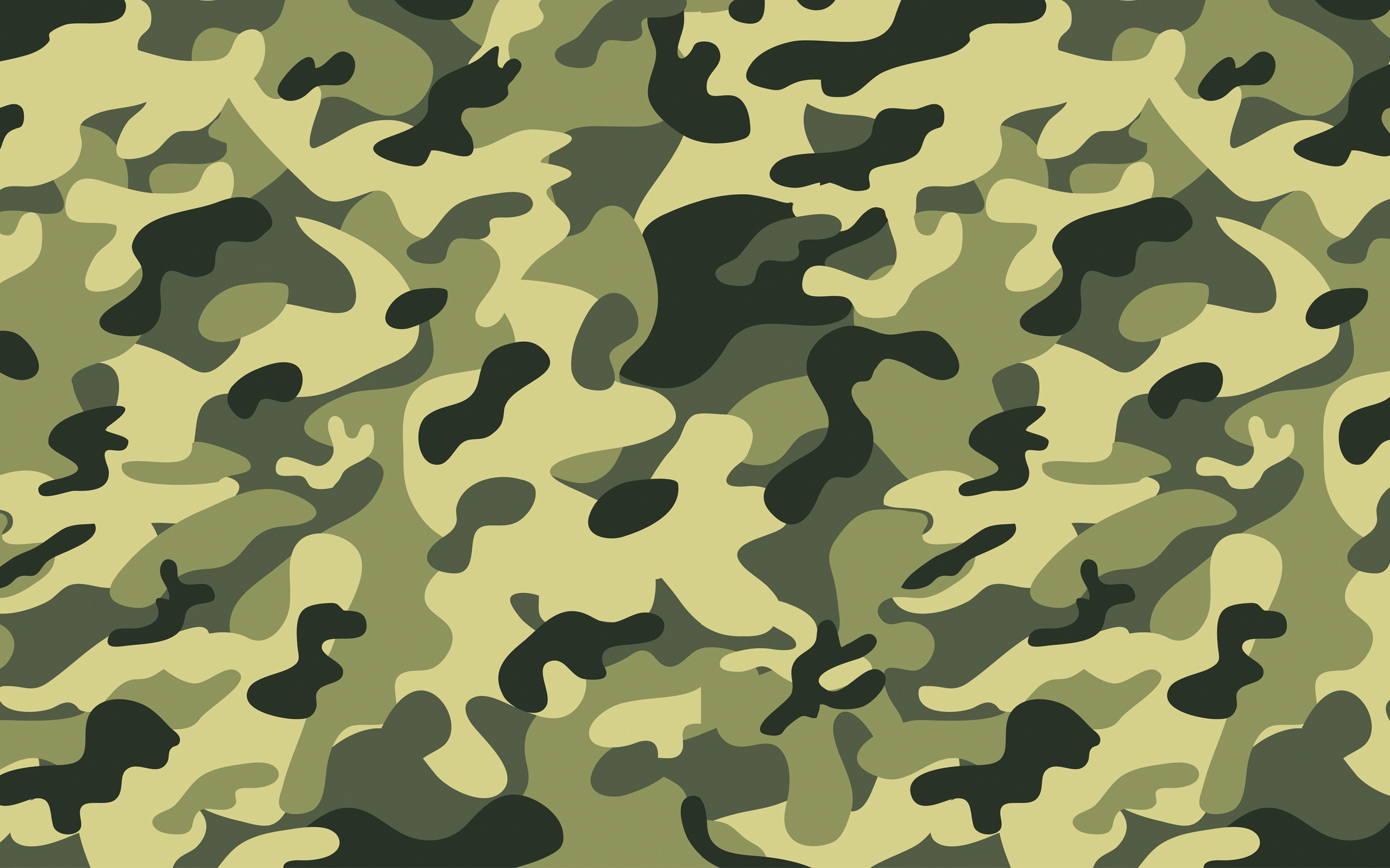 Wallpaper Camo Border Illustrazion 2560x1600