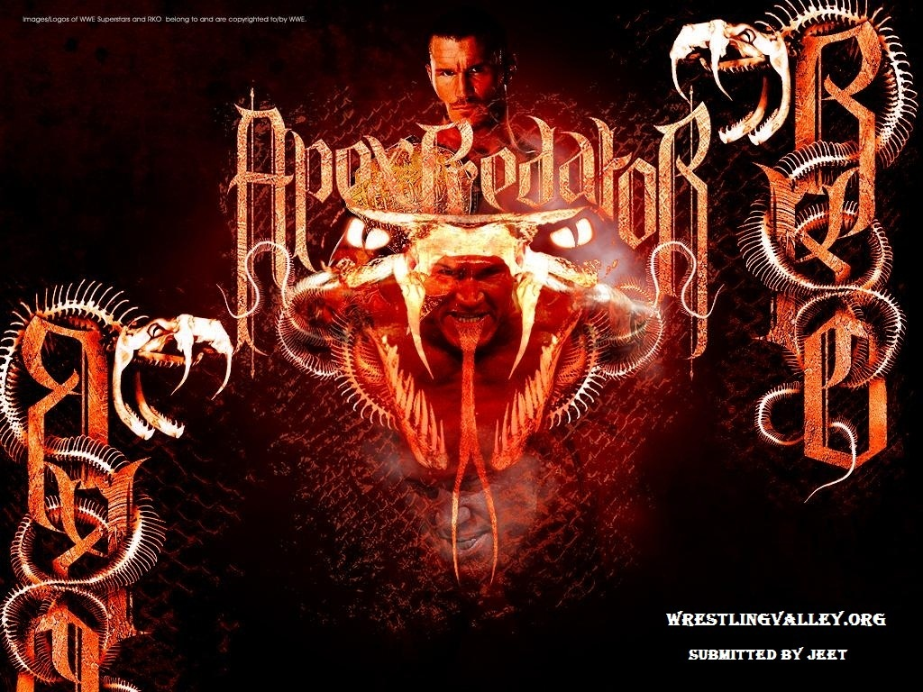Randy orton   Randy Orton Wallpaper 22294534 1024x768