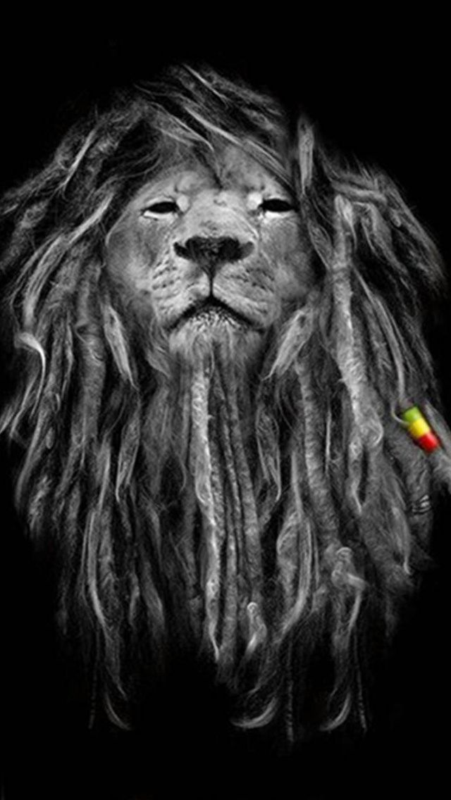 45 Lion Iphone Wallpaper On Wallpapersafari
