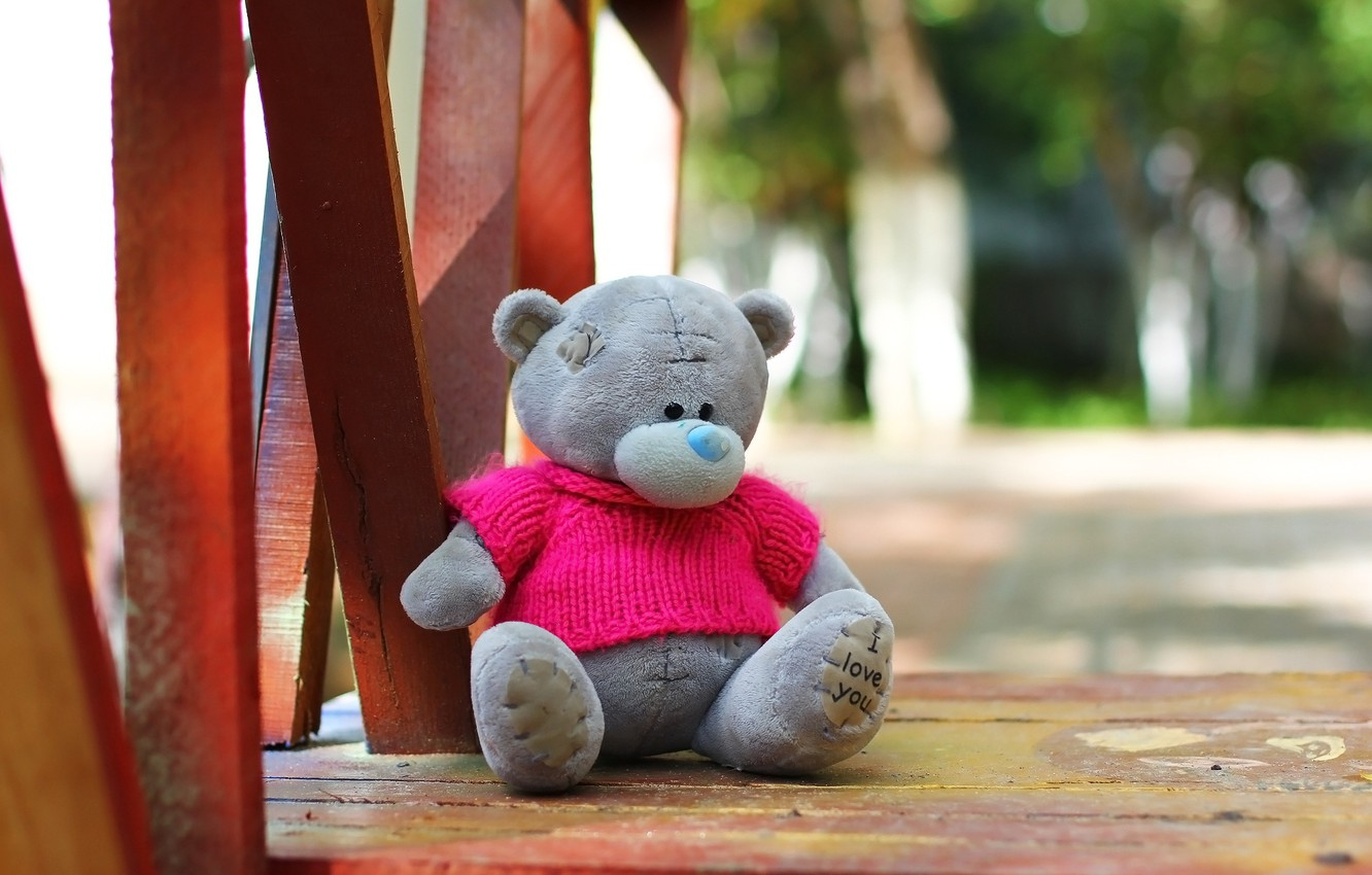 Wallpaper background toy Teddy bear images for desktop section 1332x850
