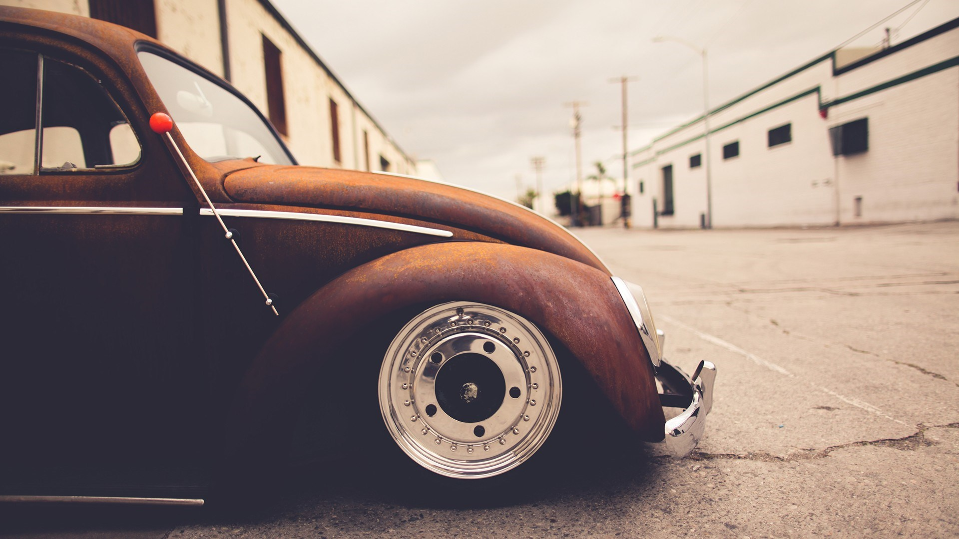 VW Volkswagen Beetle Bug wallpaper in Transportation wallpapers 1920x1080