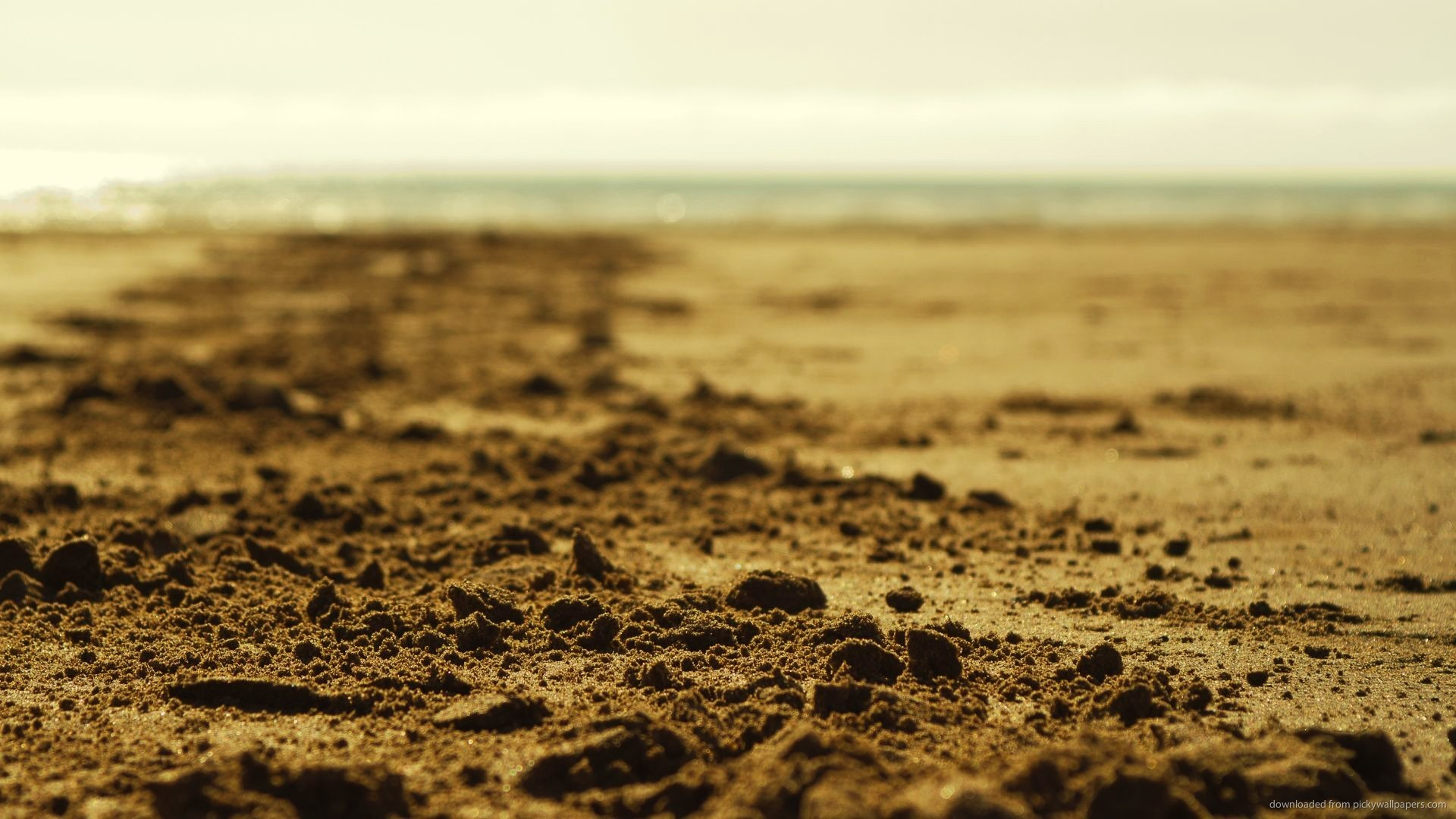 Beach Sand Depth Of Field Wallpaper Picture For iPhone Blackberry 1920x1080