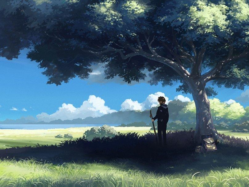 anime wallpaper nature forwallpaper hd wallpapersafari code