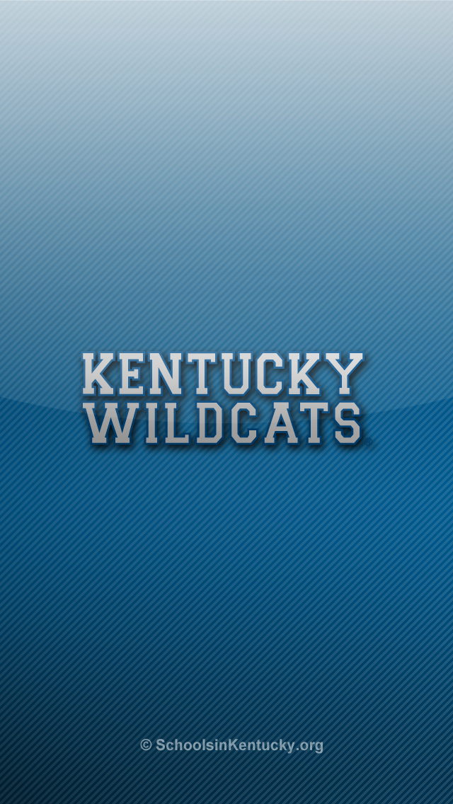 Kentucky Wildcat Desktop Wallpaper animalgals 640x1136