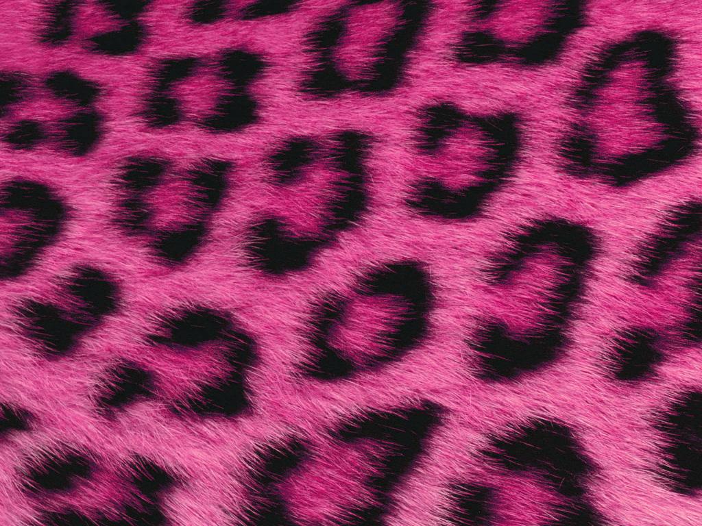 PinkFur 1024x768 1024x768
