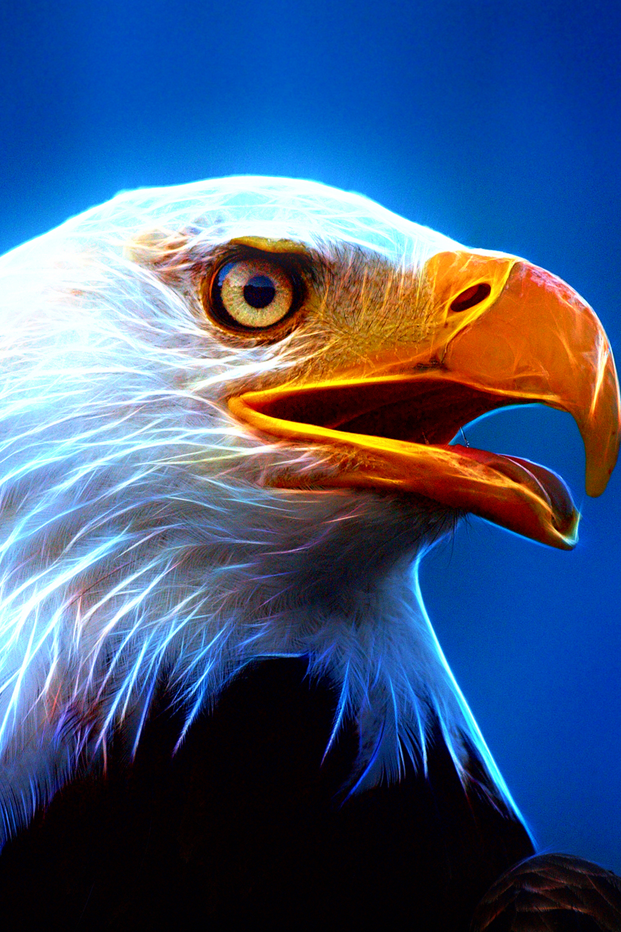 Free Download Ultra Hd Eagle 1280x1920 For Your Desktop