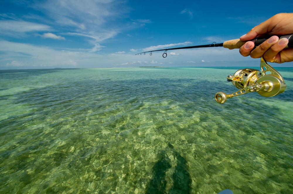 Flats fishing wallpaper wallpapersafari for Key west fly fishing