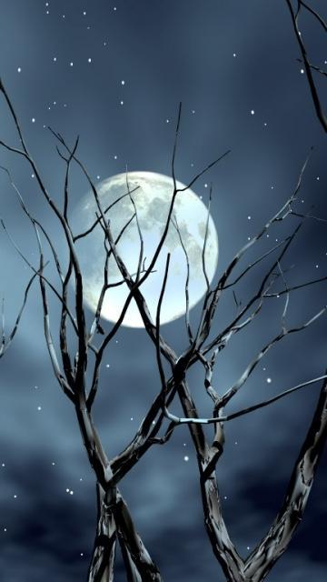 Night Moon Nokia 5233 Mobile Size 360x640 Wallpaper Entertainment 360x640
