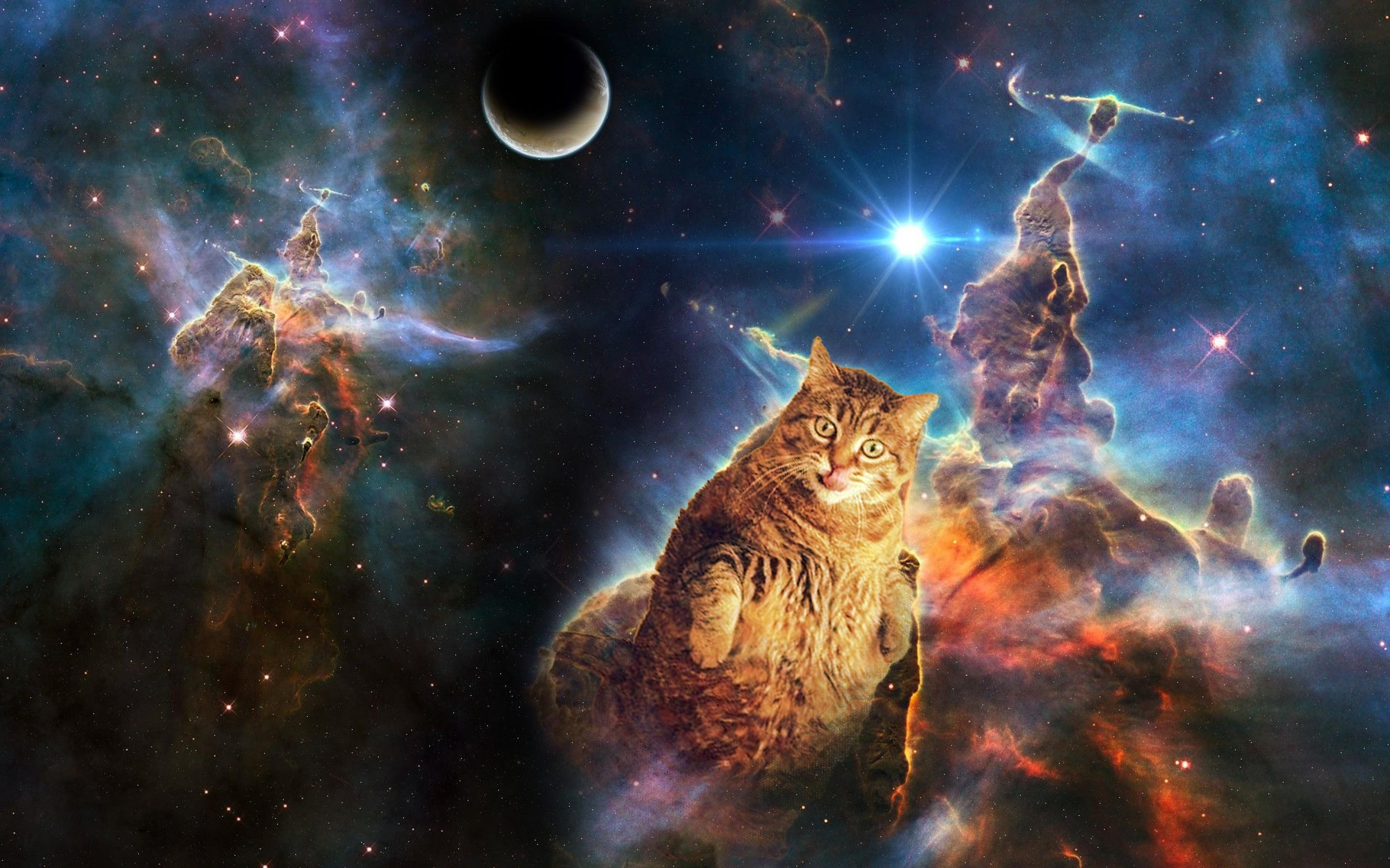 Space cat wallpaper dump   Album on Imgur 2880x1800