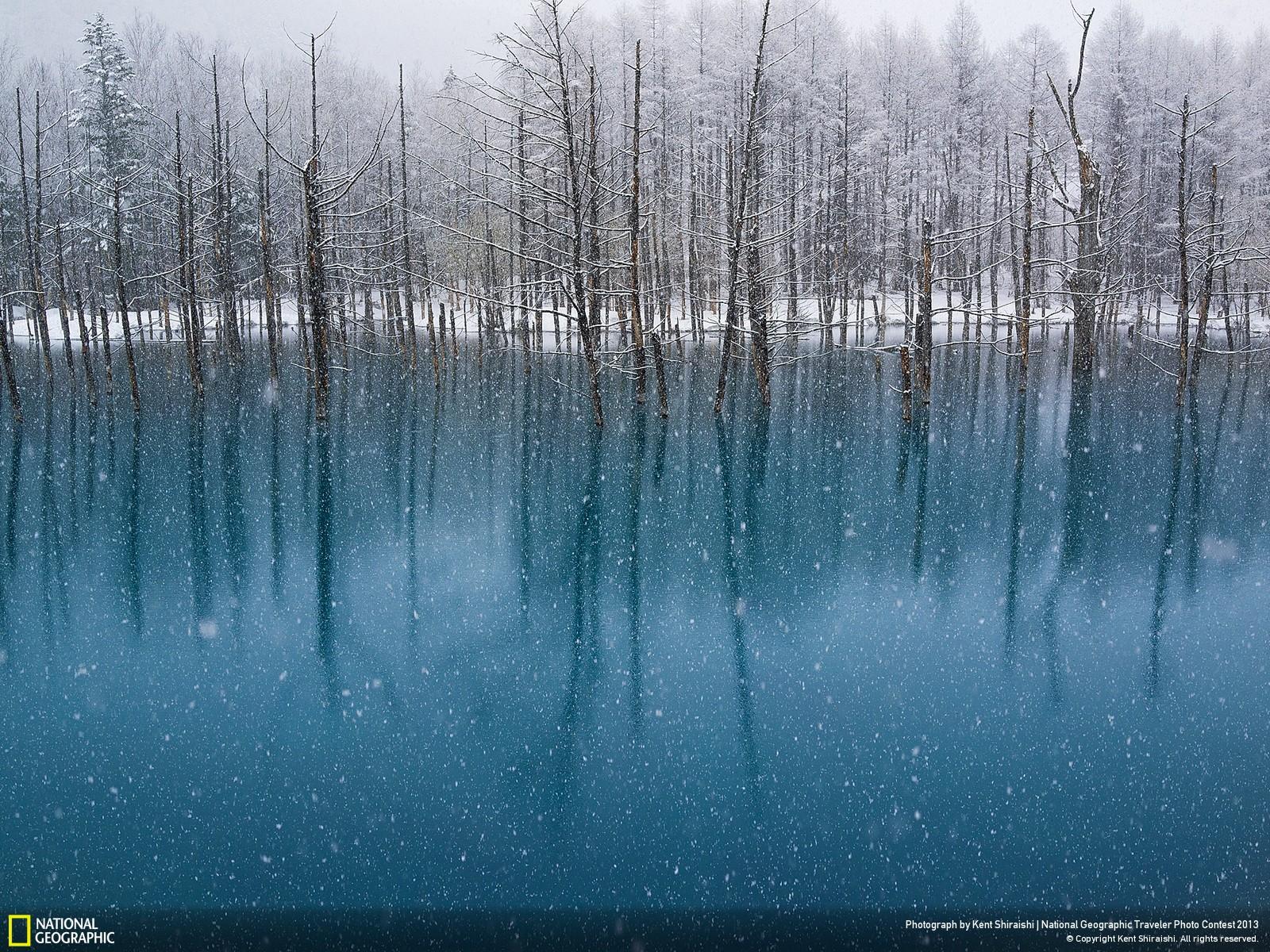 50 National Geographic Winter Wallpaper On Wallpapersafari