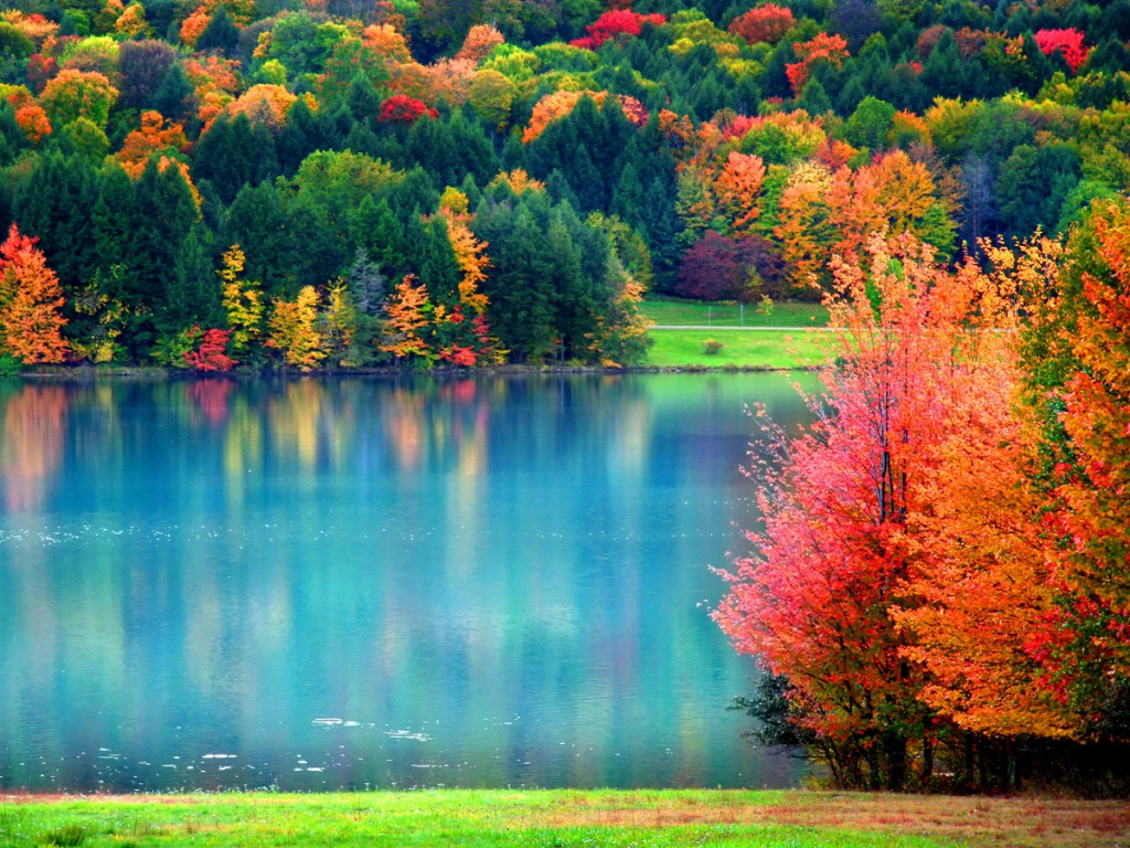 Fall Background Pictures - WallpaperSafari