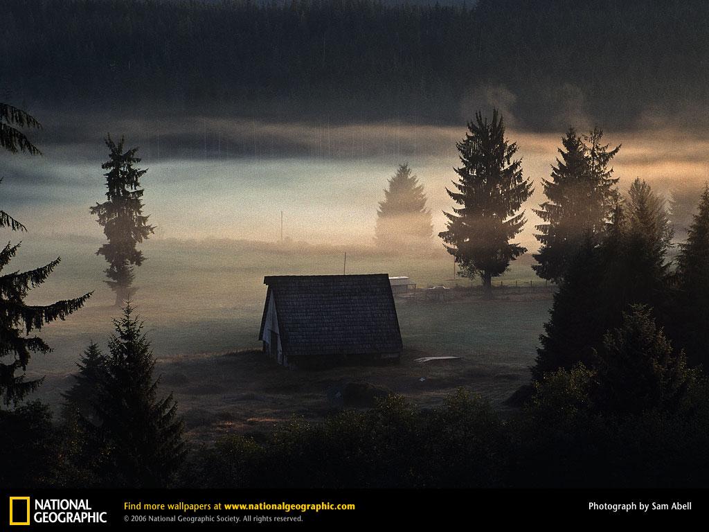 Cabin Wallpaper 1024x768