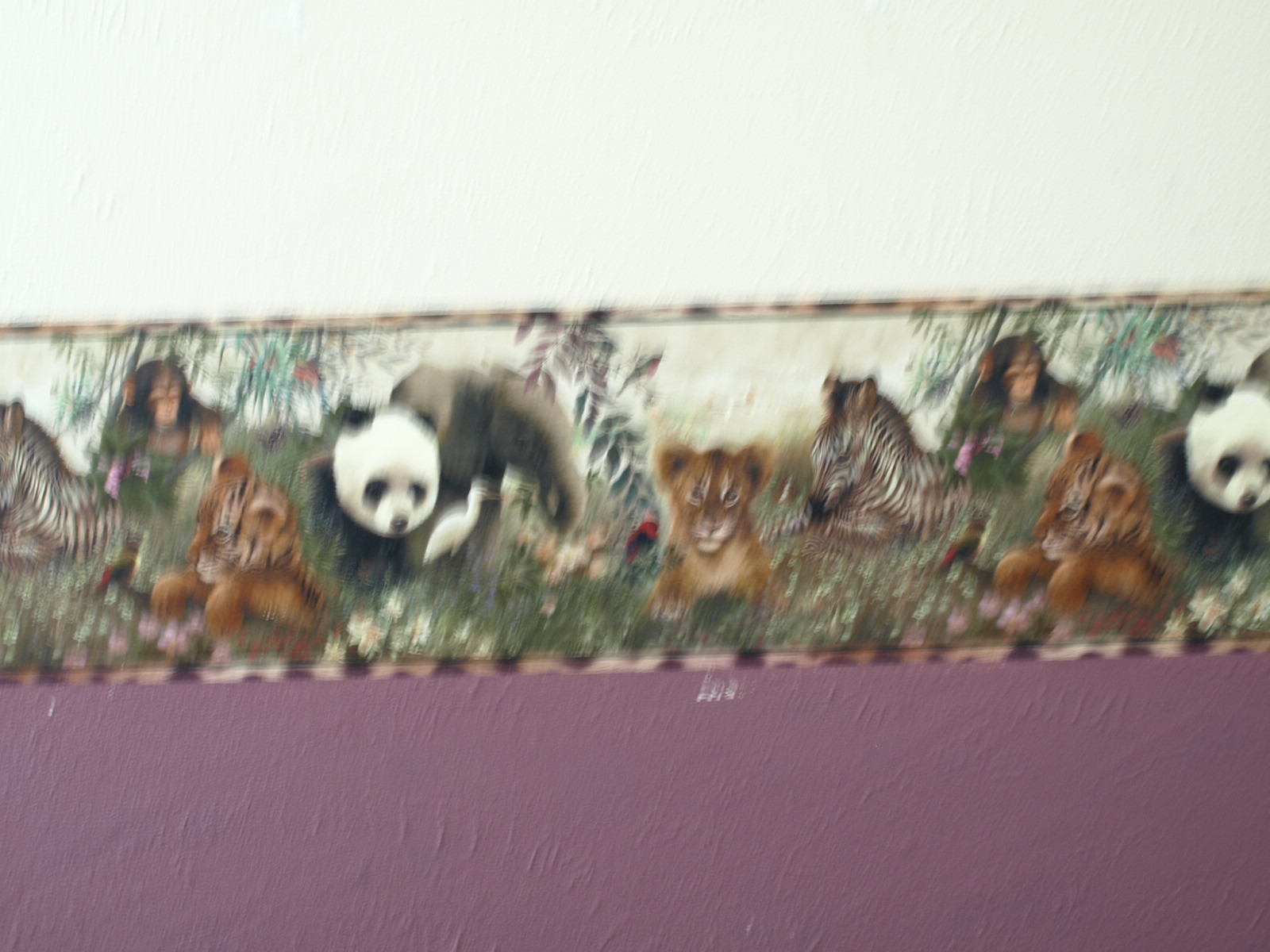 pic new posts Coordinating Wallpaper And Borders 1600x1200
