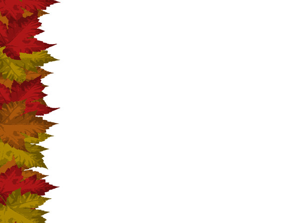 Autumn Leaves Card Card with autumnal maple leaf motif Lots of 600x450