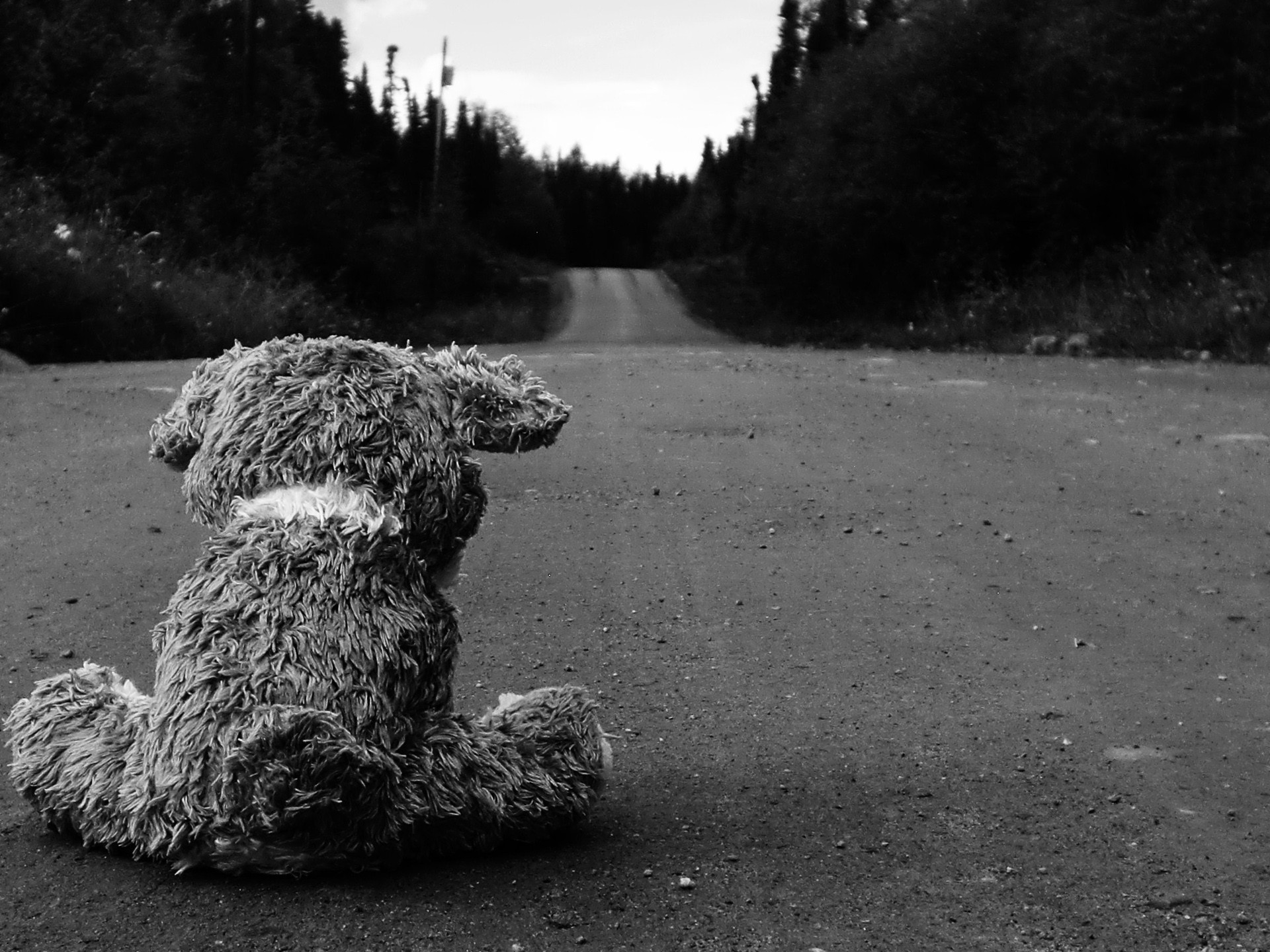 Sad Roads Wallpaper 1920x1440 Sad Roads Teddy Bears 1920x1440