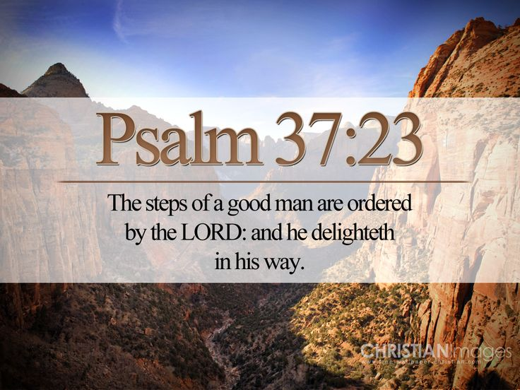 Christian Bible On Line   Psalm 3723 KJV Wallpaper Christian 736x552