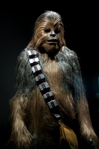 Chewbacca StarWars 334x500