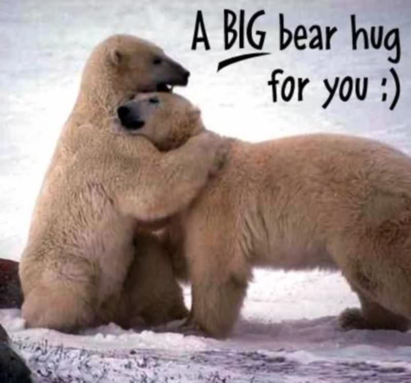 Happy hug day wallpaper and pictures 2014   Hot HD Wallpapers 800x746