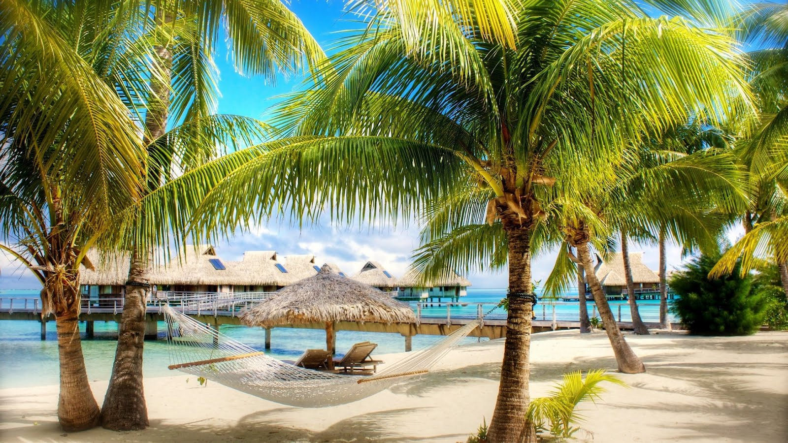 Tropical Beach Paradise Wallpaper Hd Desktop Wallpaper 1600x900