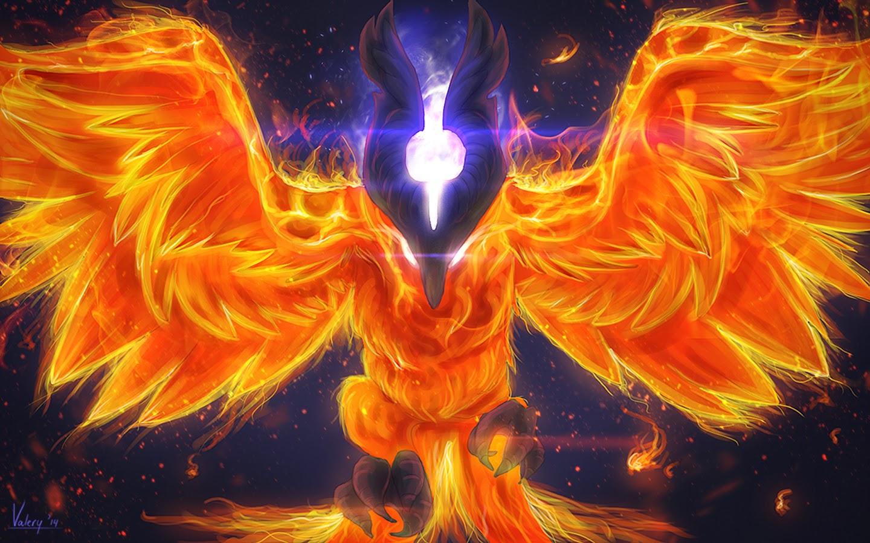 cool phoenix wallpaper wallpapersafari