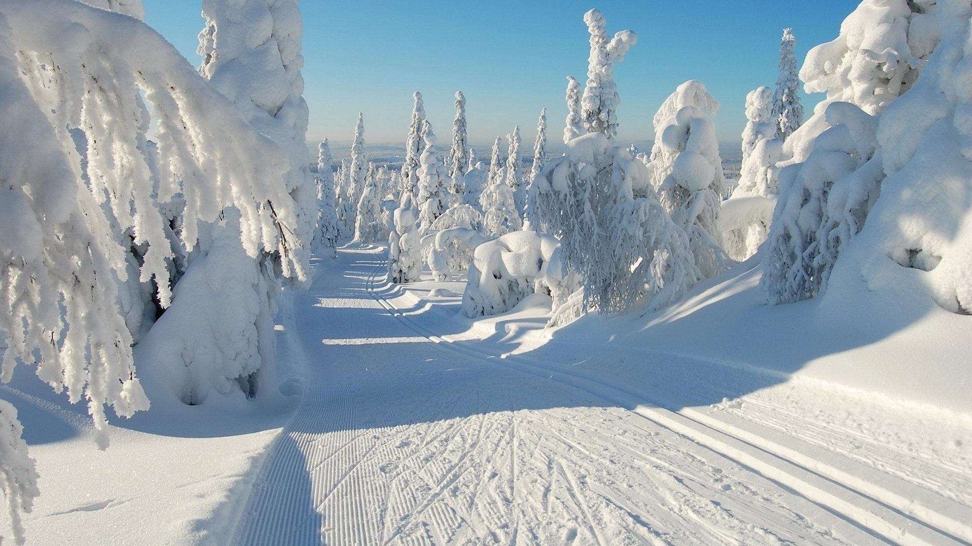 Snowy Night Wallpaper Download   Winter Snow Scene 985268 1920x1080