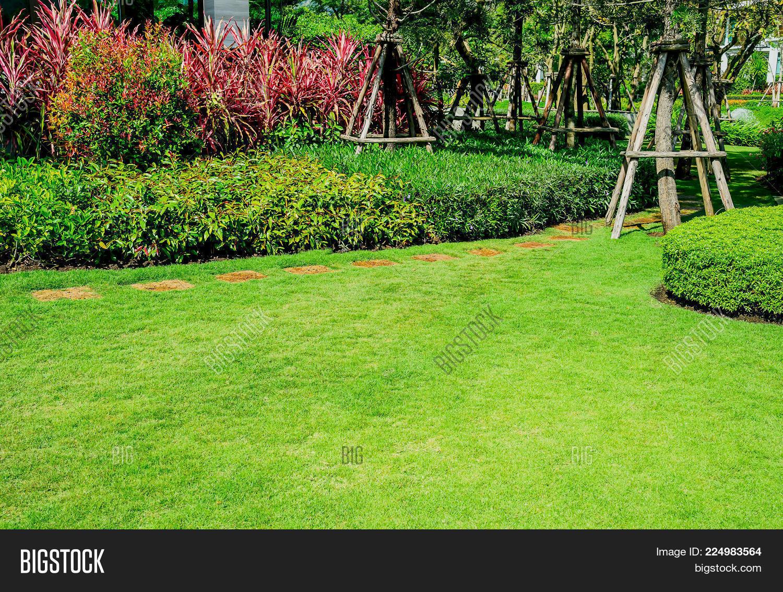 Green Lawn Front Lawn Image Photo Trial Bigstock 1500x1134