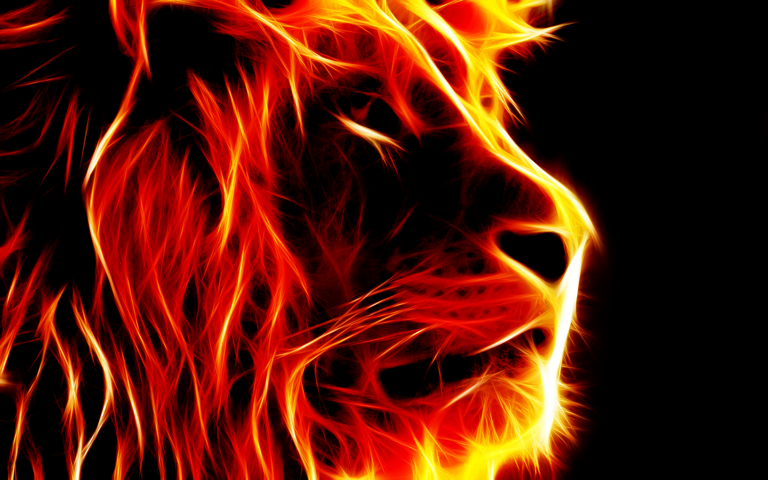 Group Of Animated Fire Lion Wallpaper