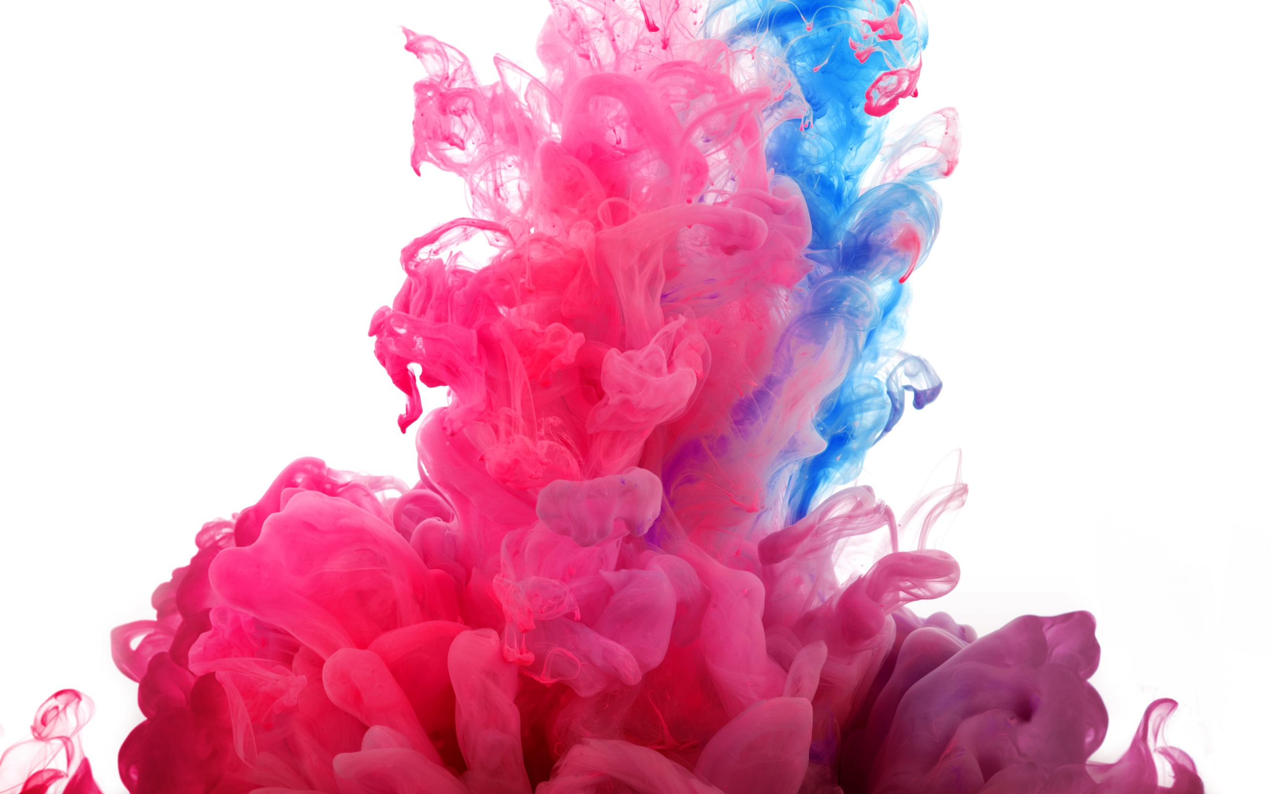 Colorful Smoke Wallpapers HD   HD Wallpapers Backgrounds 2560x1600