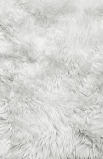 White Fur Background Stock Photo Thinkstock 334x514