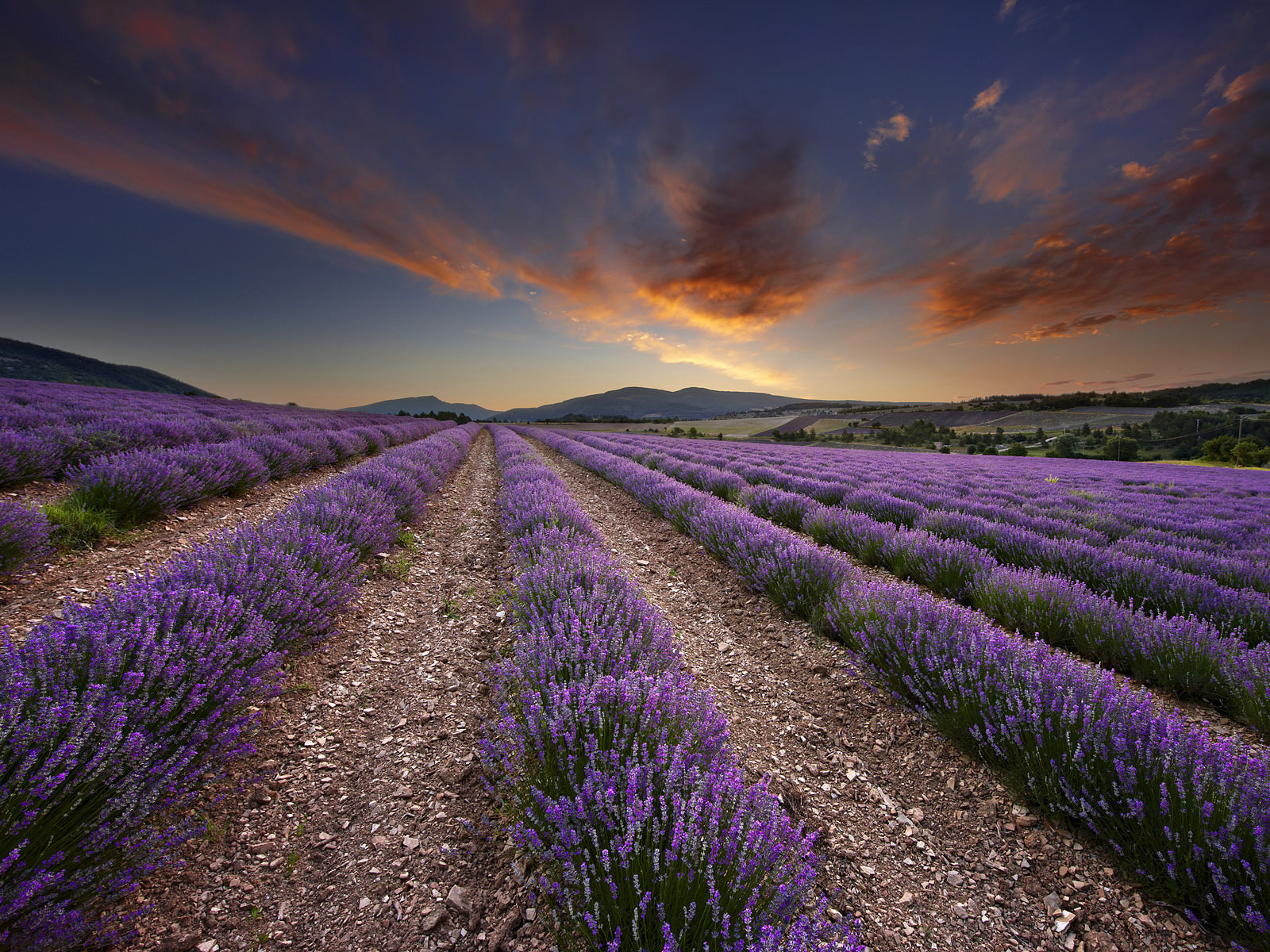 Provence France Wallpapers   Top Provence France Backgrounds 1600x1200