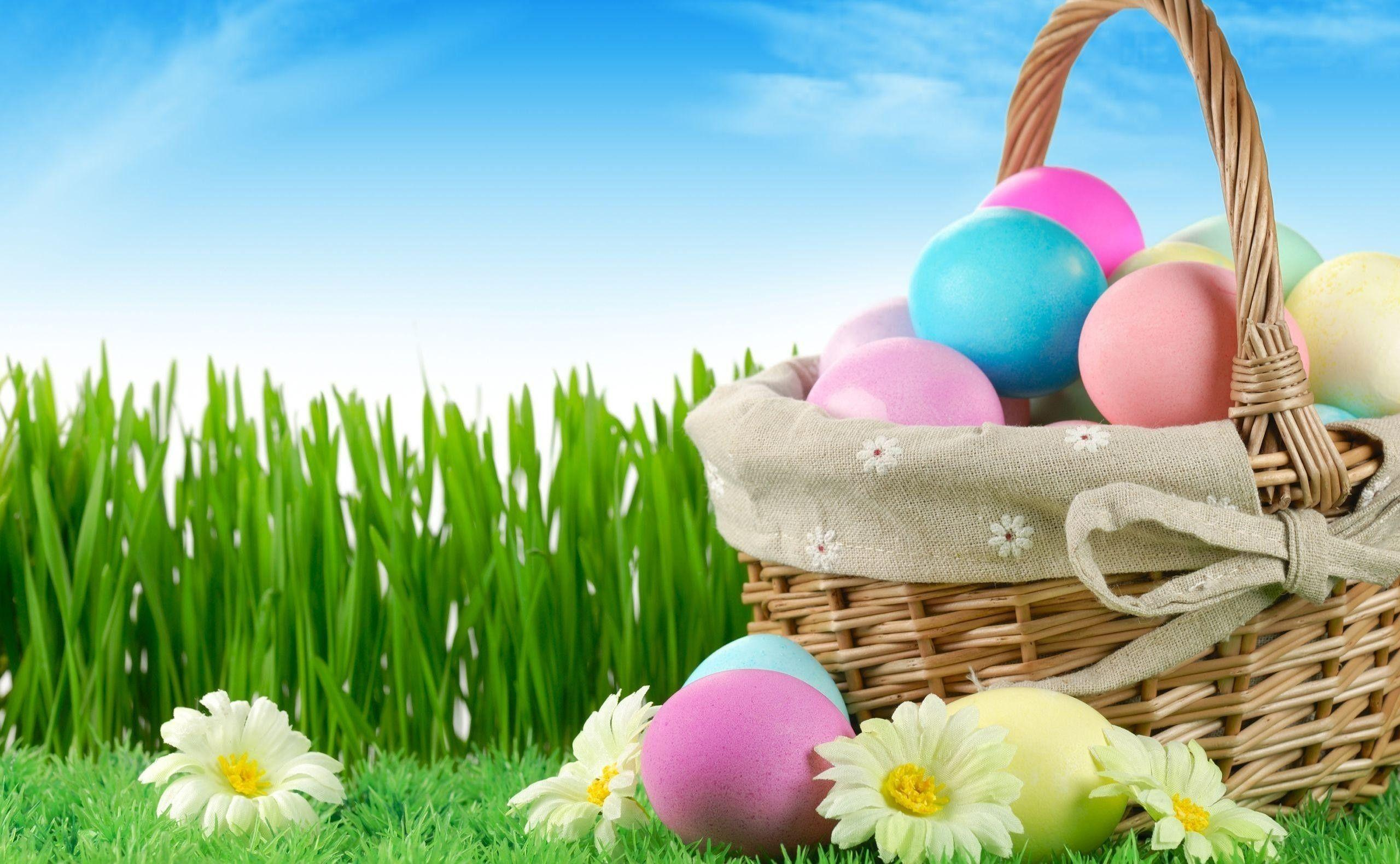 Easter Egg Backgrounds 2560x1580