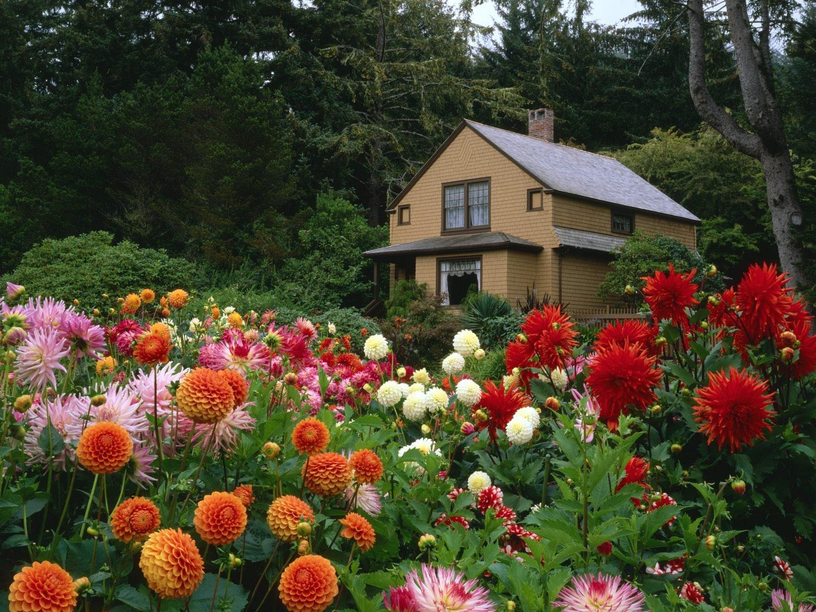 Garden House Oregon Wallpapers HD Wallpapers 1600x1200